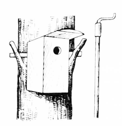 Птичий домик, навешиваемый с помощью шеста