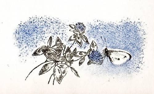 К. Д. Ушинский - Капустная бабочка