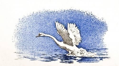 Л. Н. Толстой - Лебеди