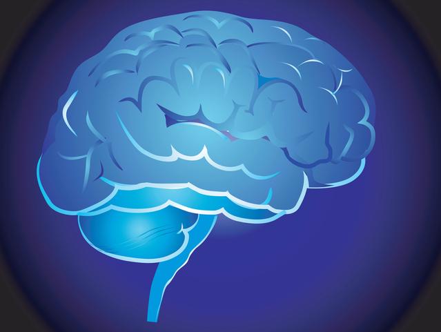 Мозг матери